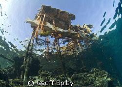 the jetty at Big Brother Island, Red sea by Geoff Spiby 